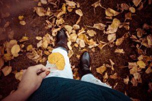 autumn-993762_640